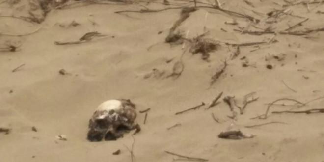 Hallan restos humanos en dunas de fraccionamiento de Coatzacoalcos