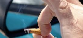 ¿Quieres dejar de fumar? La frambuesa te ayudará