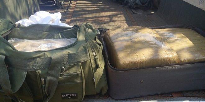 Fuerzas del orden aseguran más de 29 kilos de mariguana en autobús
