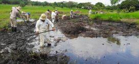 Pemex redobla esfuerzos en limpieza de arroyo El Control