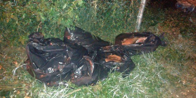 Macabro hallazgo cerca de fraccionamiento El Tejar de Xalapa: encuentran 11 bolsas con restos humanos