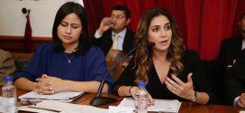Veracruz avanza en desarrollo social con la Estrategia Nacional de Inclusión